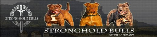 banner_stronghold