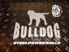 steelpowerbulls@online.de